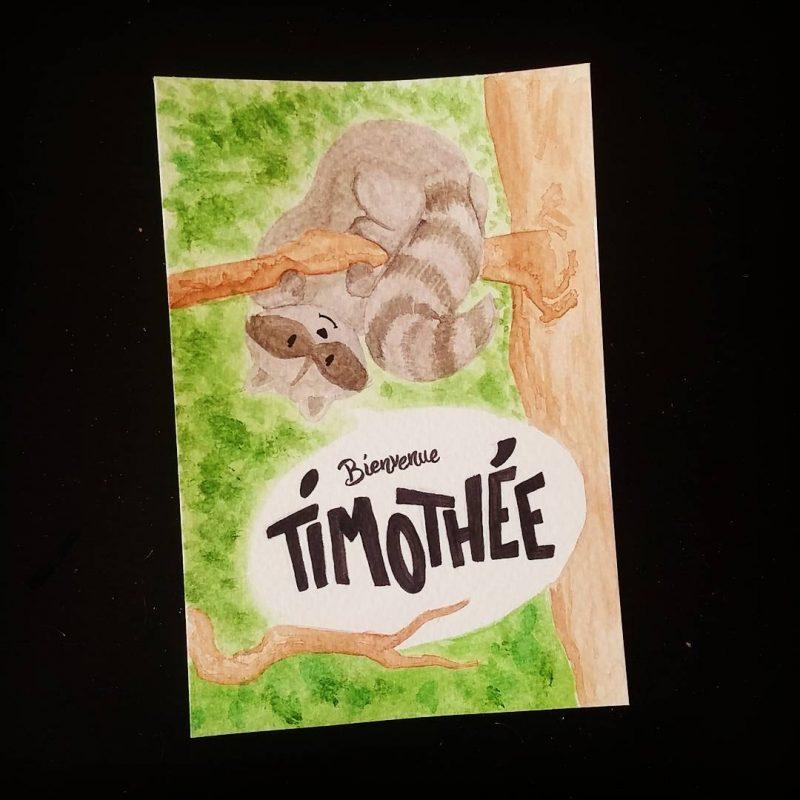 Bienvenue Timothée